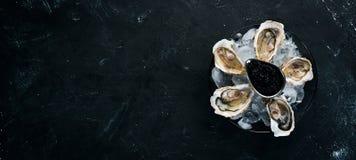 牡蛎和黑鱼子酱在冰和柠檬板材  ?? 库存图片