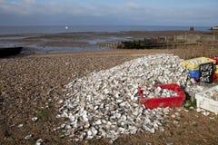 牡蛎回收whitstable 图库摄影