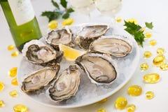 牡蛎在冰和与柠檬和酒片断  免版税图库摄影