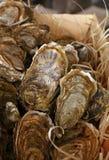 牡蛎新鲜的抓住在木箱关闭的 免版税库存图片