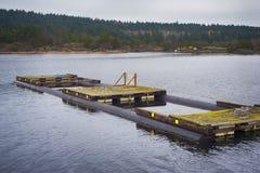 牡蛎海湾的浮动甲板,采取在Ladysmith镇, BC, 免版税库存图片