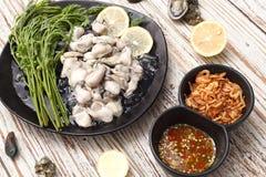 牡蛎海鲜柠檬新鲜的亚洲油煎了青葱调味汁 库存图片