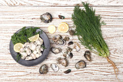 牡蛎海鲜柠檬新鲜的淡菜亚洲开胃菜 库存照片