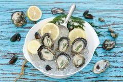 牡蛎海鲜柠檬莳萝新鲜的淡菜亚洲开胃菜 免版税图库摄影