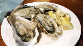 牡蛎海鲜柠檬莳萝新鲜的淡菜亚洲开胃菜 库存图片
