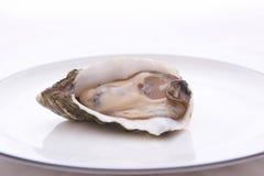 牡蛎牌照 库存图片