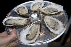 牡蛎牌照 免版税库存照片