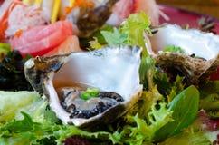 牡蛎生鱼片 免版税图库摄影