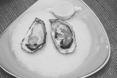 牡蛎用柠檬和被击碎的冰 与Ω 3维生素的健康纤巧 海鲜和地中海烹调 节食和 库存照片