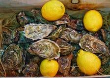 牡蛎用柠檬 免版税库存照片