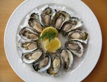 牡蛎盛肉盘 库存图片