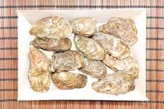 牡蛎 图库摄影