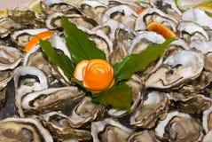 牡蛎 库存图片