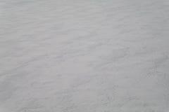 从牢固的雪的背景在干草原 14 免版税库存照片