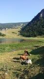 牧人村庄和山湖 库存照片