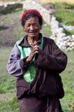 牧人藏语 免版税图库摄影