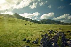 牧场地发出光线星期日 库存照片