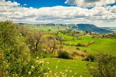 牧场地在中央西西里岛,意大利 免版税库存照片