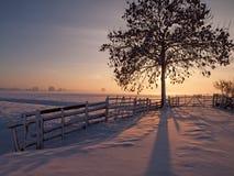 牧场地在冬天 库存照片