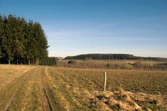 牧场地天空 免版税图库摄影