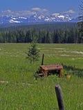牧场地放置 免版税库存照片