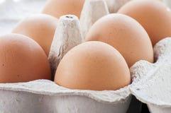 从牧场地被培养的鸡的有机鸡蛋 免版税库存图片