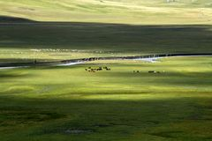牧场地 免版税库存图片