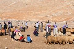 牧羊人和人们是在牲畜市场上 免版税库存照片