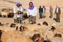 牧羊人和人们是在牲畜市场上 免版税库存图片