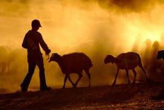 牧羊人年轻人