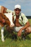 牧羊人母牛轻拍。 免版税库存照片