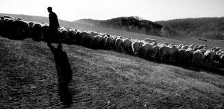 牧羊人的剪影 免版税库存图片