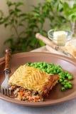 牧羊人` s饼或村庄饼是与土豆泥顶部的一个肉馅饼  免版税库存照片
