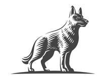 牧羊犬,传染媒介例证 皇族释放例证