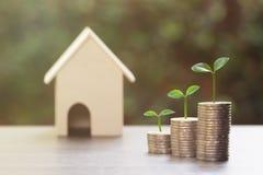 物产投资、房屋贷款、反向抵押,事务和财政,攒钱概念 在堆的植物生长硬币 免版税库存照片