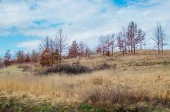 特兰西瓦尼亚的小山风景 免版税库存照片