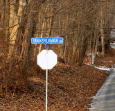 特兰西瓦尼亚自然路的边 免版税库存图片