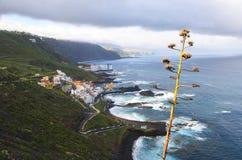 特内里费岛风景 免版税库存照片