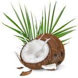 特写镜头与牛奶飞溅的椰子在白色背景 库存照片