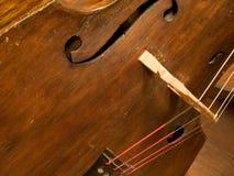 特写镜头低音提琴 免版税库存照片