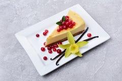 特写镜头切片可口自创乳酪蛋糕用新鲜的蔓越桔、焦糖调味汁、香草荚和花在灰色混凝土 免版税库存图片