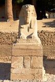 特写镜头卢克索狮身人面象寺庙 免版税库存图片