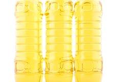 特写镜头含油种子 免版税图库摄影