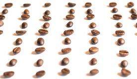 特写镜头咖啡豆复制空间,白色后面地面 免版税库存图片