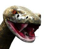 特写镜头响尾蛇准备好的罢工 免版税库存图片