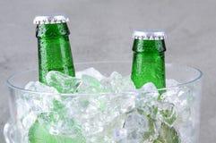 特写镜头在冰桶的啤酒瓶 免版税库存图片