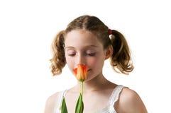 特写镜头女孩嗅到的郁金香 库存照片