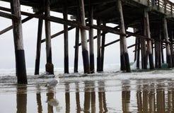 特写镜头射击了在有镇静蓝色海的码头下 库存图片