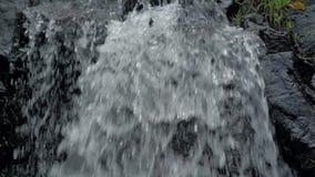 特写镜头小瀑布慢动作射击在菲律宾热带雨林密林  小暗藏的岩石 股票录像