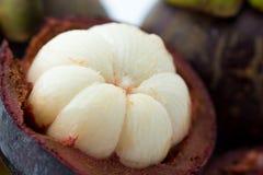特写镜头山竹果树在泰国结果实,果子的女王/王后 库存照片